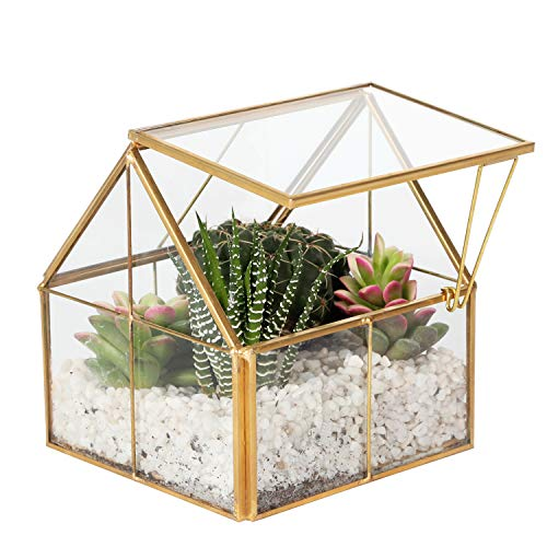 Kimdio Geometric Terrarium Clear Glass Tabletop Planter Flower House Modern Air Plant Holder Display for Succulent Fern Moss Air Plants Holder Miniature Outdoor Fairy Garden DIY Gift -Gold