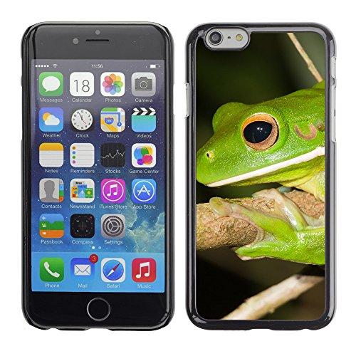 """Premio Sottile Slim Cassa Custodia Case Cover Shell // V00003999 LITORIA INFRAFRENATA // Apple iPhone 6 6S 6G PLUS 5.5"""""""