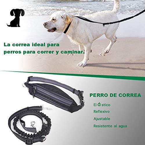 ALISTAR Correa de Jogging para Perros, Cinturón con Bolsa ...