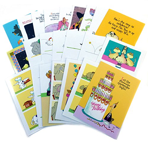 Birthday Card Assorted Humorous Pack of 24 Cards & 25 Envelopes - Funny Boxed Birthday Card Set - Assortment #1