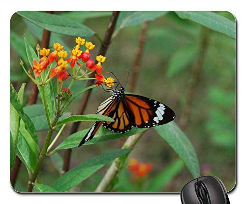 (Mouse Pads - Garden Butterfly Insect Wing Wildlife Bug Bright)