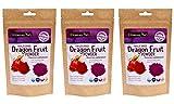 Wilderness Poets Freeze Dried Dragon Fruit Powder - Pitahaya Powder, 3.5 Ounce (Pack of 3)