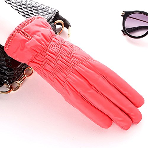 ladies cashmere warm Pink plus cotton feather cold driving Winter screen outdoor Zhhyltt touch gloves thick nxUwRXz