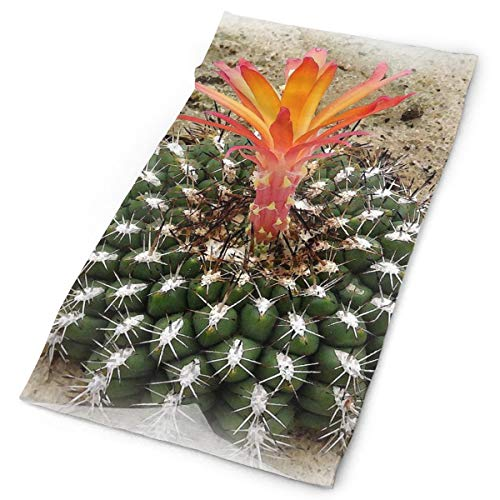 NMCEO Headband Watercolor Cactus Amazing Headwear Sport Headkerchief Outdoor Activities for Boy -
