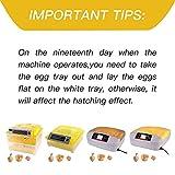 SUNCOO Digital 32 Egg Incubator Hatcher Automatic
