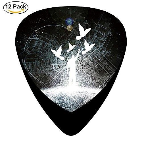 oid Guitar Picks Plectrums For Guitar Bass,12 Pack ()