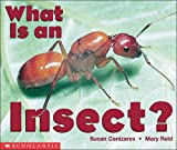 What Is an Insect?, Susan Canizares and Mary Reid, 0590397907