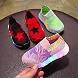 Kids Mesh Shoes, Familizo Lovely Children Kid Girls Boys Led Light Star Luminous Sport Mesh Student Casual Shoes Fashion Comfortable Shoes for 1.5-7 Years Old