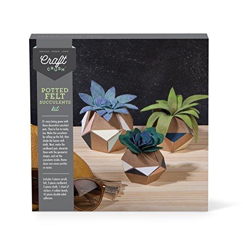 Craft Crush Potted Felt Succulents Kit