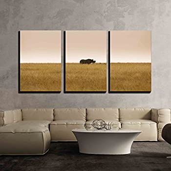 wall26 3 Piece Canvas Wall Art - Critically Endangered Black, Hook-Lipped Rhinoceros Diceros Bicornis in African Savanna - Modern Home Decor Stretched and Framed Ready to Hang - 24