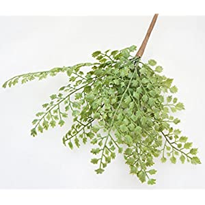 """Lily Garden 12"""" Artificial Soft Plastic Maidenhair Fern - Package of 6 2"""