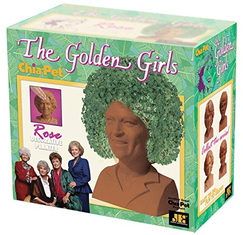- Chia CP409A08 Golden Girls-Rose Pottery Planter, One Size, Terra Cotta