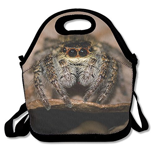 Cute Tarantula Spider Animal Lunch Box Tote Bag Cool -