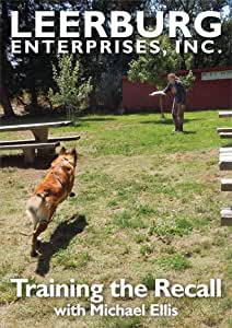 Reviews of the Top 10 Dog Training Guides of 2020