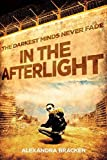 download ebook in the afterlight pdf epub