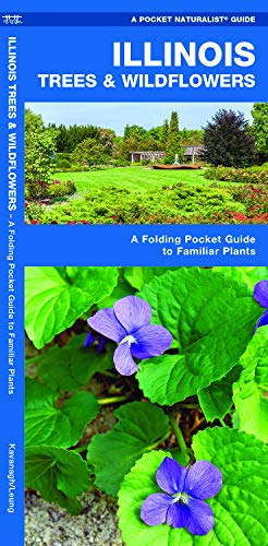 Illinois State Tree - Illinois Trees & Wildflowers: A Folding Pocket Guide to Familiar Species (A Pocket Naturalist Guide)