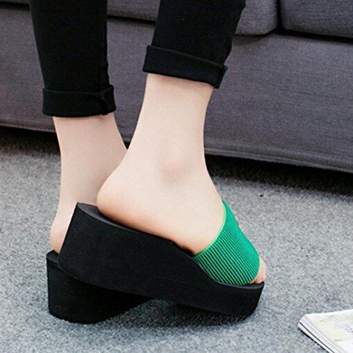 Sandalias para Mujer, RETUROM Zapatillas de interior para mujer nueva sandalias al aire libre flip-flop zapatos Verde