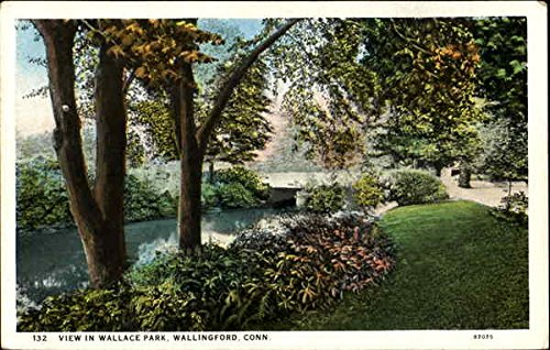 - View In Wallace Park Wallingford, Connecticut Original Vintage Postcard