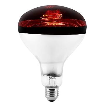 pet heizung lampe und uvb licht e27 uva glühbirne brooder reptil wärme