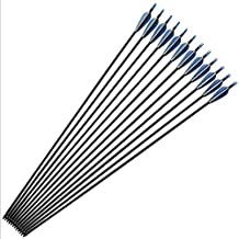 HBG 6Pcs 32'' Archery Fiberglass Arrows Spine 500 ,Diameter 7.6mm,Targeting/hunting Arrows With Changeble Tips for Recurve Bow and Compound Bow