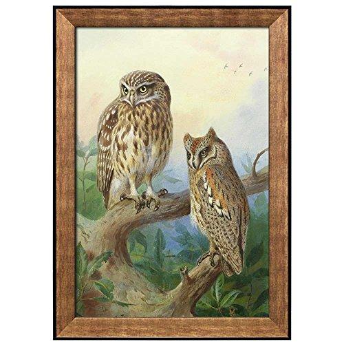 Beautifully Drawn Owls Resting on a Tree Branch by Archibald Thorburn Framed Art