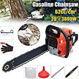 "Laliva Professional Chainsaw 20"" 3800W Bar Gas Gasoline Powered Chainsaw 62cc Engine Cycle"