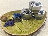 JANECKA Multi Color Eye Shadow - Handcrafted - Mineral Make-Up - Gift Set