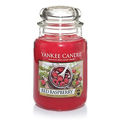 Yankee Candle Red Raspberry Tea Light Candles, Fruit Scent