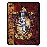 """Harry Potter,""""Battle Flag"""" Micro Raschel Throw Blanket, 46"""" x 60"""""""