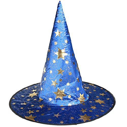 RoseSummer Peaked Cap Womens Witch Hat For Halloween Costume Accessory (Diy Cheap Halloween Costumes Adults)