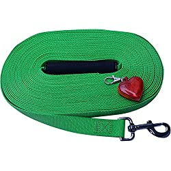 "50' Dog Leash by Imprints Plus Made of 1"" Wide Woven Polyester with Heart Shaped LED Safety Light by Imprints Plus"