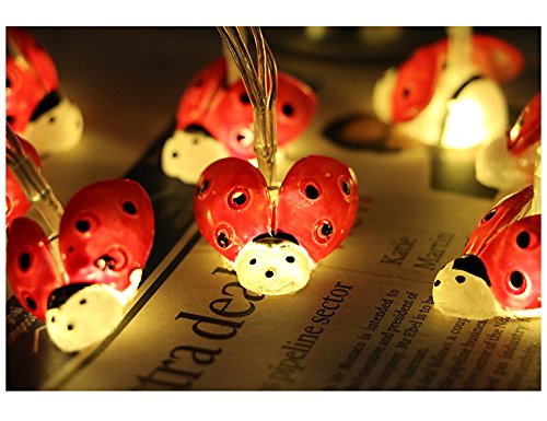 LJM 20 Led Battery Operated Lovely String Lights For Indoor Outdoor Decoration For Baby Boy Girl Birthday (Lady Bug) (Lights Ladybug)