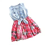 sunnymi For 0-8 Years Old Fashion Cute Toddler Kids Baby Girl Outfit Floral Short Skirt Short Sleeve Tie Bow Clothes Dress (White, 0-1 Years Old)