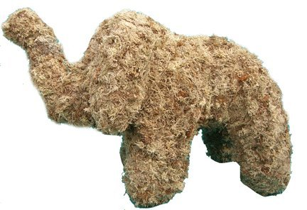 - Elephant Sphagnum Moss Topiary Form - Sm