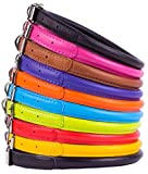 Leather Dog Collar - CollarDirect Rolled Dog Collar Puppy Leather Soft Padded Round XS S M L XL sizes Pink Red Purple Black Orange Blue Brown Green (Blue, XS 9