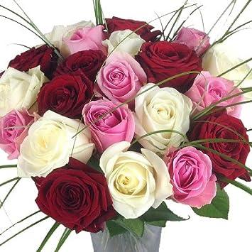 Blumenstrauß Premiumrosen Rosenstrauß De Luxe Langstielig Großblütig