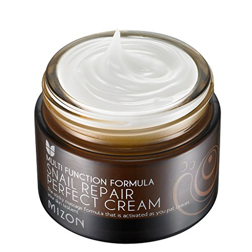 [MIZON] Snail Repair Perfect Cream 50ml (1.69 fl.o…