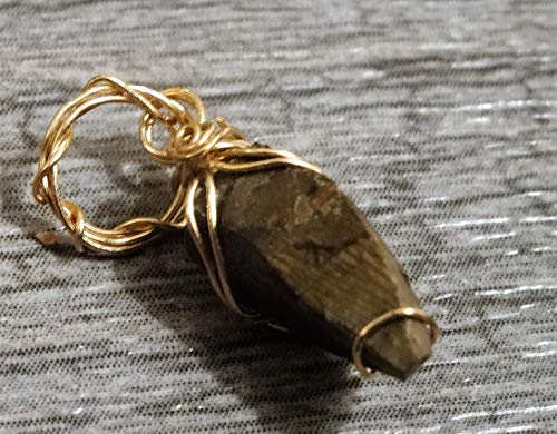Fossil Pendant Rose (Real Small TRex Tyrannosaurus Tooth Tip Wrapped in 14K Rose Gold Pendant Judith River)