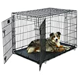 Midwest Life Stages Double-Door Folding Metal Dog Crate, 42-Inch by 28-Inch by 31-Inch