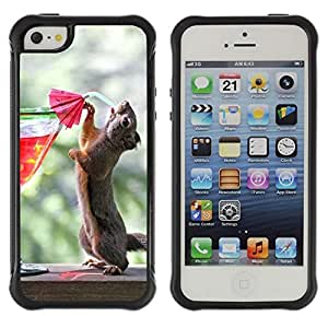 Hybrid Anti-Shock Defend Case for Apple iPhone 5 5S / Squirrel Drinking