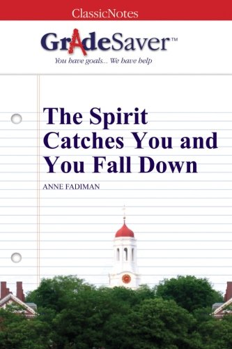 the spirit catches and you fall down chapter summary