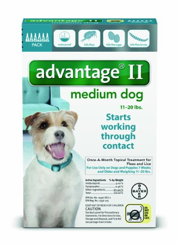 Bayer Advantage Ii Flea And Lice Treatment For Medium Dogs  11   20 Lb  6 Doses