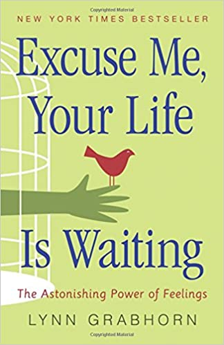 Excuse Me Your Life Is Waiting The Astonishing Power Of Feelings Grabhorn Lynn 8601419790623 Amazon Com Books How to say i didn't mean it. excuse me your life is waiting the
