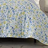 Laura Ashley   Nora Collection   Comforter