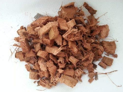 HIGH Germination Seeds:175g Coconut Husk for Orchids, Anthurium & Hoya Seeds ()