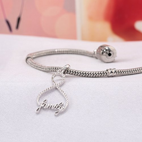 Infinity Love My Family 925 Sterling Silver Charms 8 Shaped Pendant Clear CZ For Bracelets Necklace Jewelry (Full CZ) by Amatolove Jewelry (Image #1)