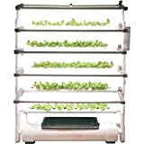 OPCOM Vertical Hydroponic Grow Wall — 75 Grow Sites, 5-Tier Display, Model# OFG003 Review