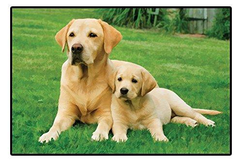 Carolines Treasures Friends Retriever Welcome Yellow Labrador Floor Mat 19hx27w Multicolor