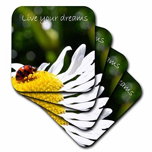 Ladybug Ceramic Tile (3dRose cst_23636_3 Inspirational Ladybug Ceramic Tile Coasters, Set of 4)