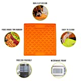 Hyper Pet Boredom Buster Slow Feeder Dog Mat